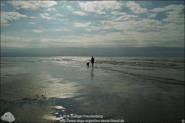 Strand De Koog bei Ebbe