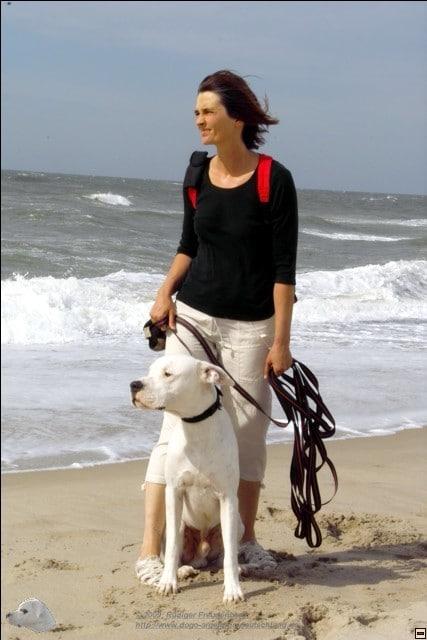Sommer, Sonne, Strand, Wind und Chefin mit Hund