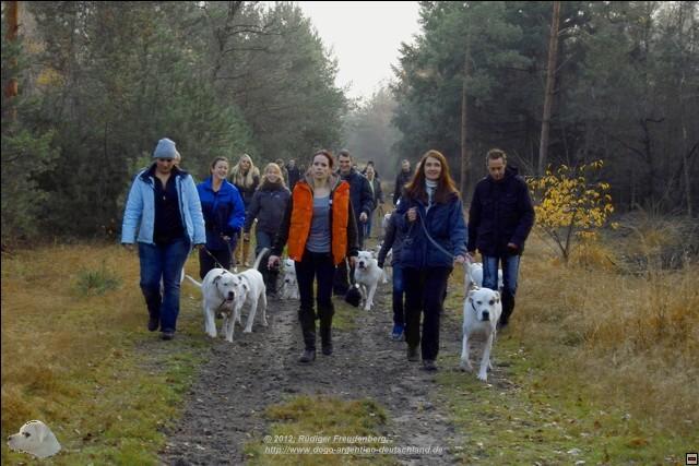 Spaziergang im November 2012