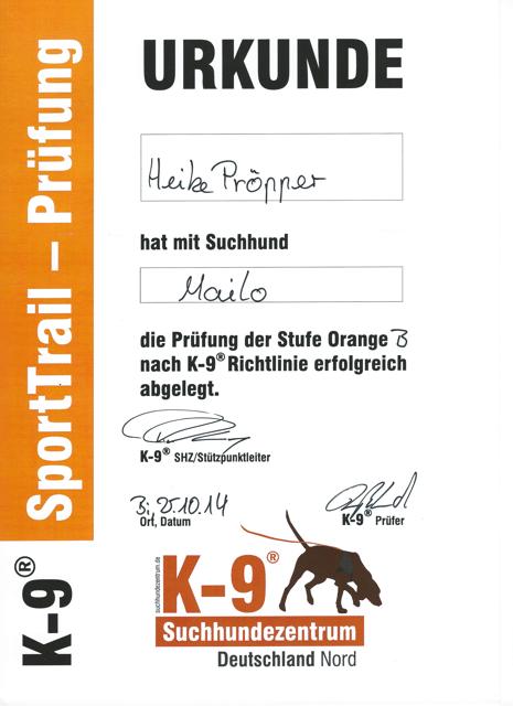 Prüfung_Orange_B