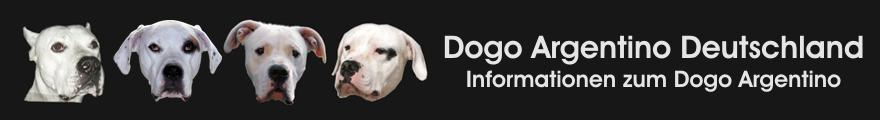Dogo Argentino Deutschland
